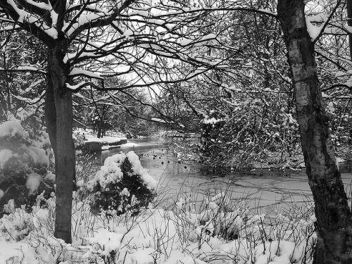 'Snow In Dennistoun' by sgruntiver via flickr